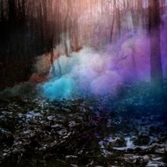 Coloured Smoke #smoke #trees #photography #colour #helmo