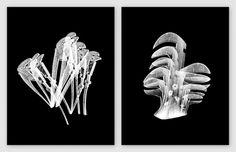 ANDREAS JOHANSEN #design #graphic #poster
