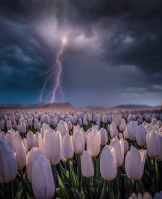 Epic Weather and Storm Photography by Brent Shavnore