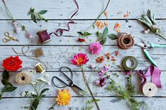 Taproot Flowers - Art Direction by Linsey Laidlaw, Photographed by Alpha Smoot