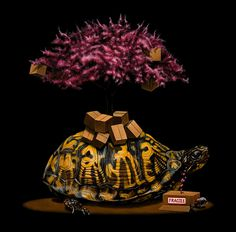 Turtle in animal surreal art