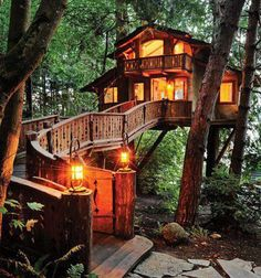 Treehouse in the Pacific Northwest