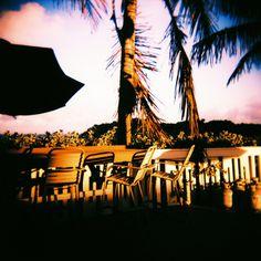 Love © Adele Jancovici 2015 Color print on paper #miami #Photography #art #palmtree #color #colorsplash #paradise #sea #ocean #pink #blue