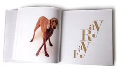 William Wegman | Silvia Mallofre #weimaraner #book #dog