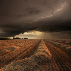 Harvest Time by Franz Schumacher #nature #photography #landscape