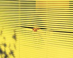 6, Andrew B. Myers #photography