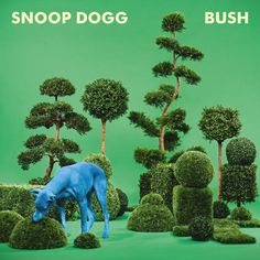 #snoopdogg #bush #cd #albumcover #green #dog