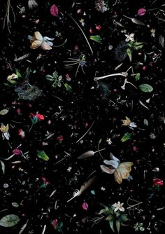 ocean trash photo collages by mandy barker #soup #black #trash #spatter #still #life