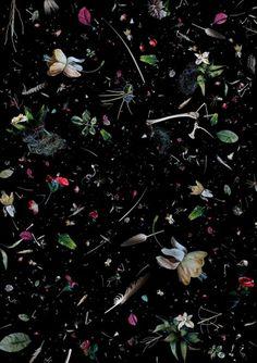 ocean trash photo collages by mandy barker #black #trash #still life #soup #spatter