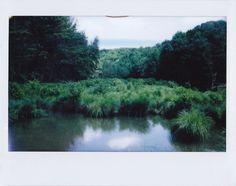 Polaroid Photography by Tyler Sharp