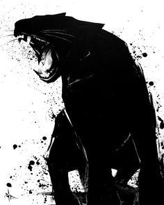 sit #black #cat #panther