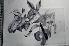 FLOURISH IN OBSCURITY on Behance #deer #fox #realistic #badger #elk #illustration #animals