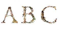 Prikbordfoto's #novotypo #typedesign #typeface #typography
