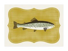 The Design Repository of Brad Surcey #print #screen #illustration #trophy #trout