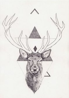 Art & Science Journal | Illustration and Graphics #illustration #inspiration #deer #science #art
