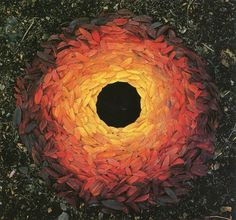 Andy Goldsworthy #ephemeral #nature #leaves