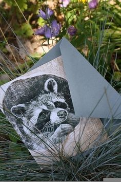 Snail's Pace Raccoon Illustration - Note Card #pace #snais #stationery #racoon #paper