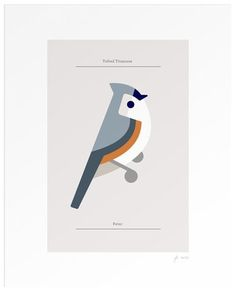 FFFFOUND! | Lumadessa | Tufted Titmouse - Silver Edition #design #graphic