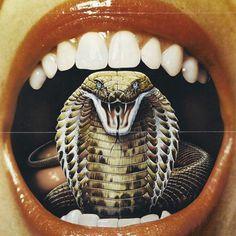 Designersgotoheaven.com @andreirobuSssssss. #style #lips #cobra #anti