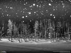 Snowflakes, Rucca Y Ito
