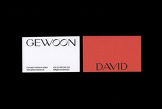 Picture of 2 designed by Andrés Rosa and Rafa Garcés for the project Gewoon David. Published on the Visual Journal in date 19 March 2018