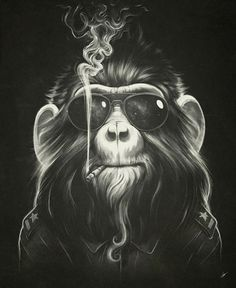 Looks like good Illustrations by Lukas Brezak #glasses #smoke #monkey
