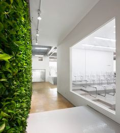 daxing factory conversion nie yong + yoshimasa tsutsumi of tsutsumi & associates #office