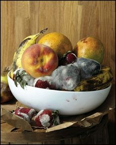 Bonne Chance - Still Life by Roe Ethridge for Vice's Photo... #morte #fruits #art #nature