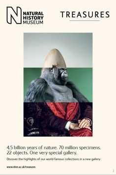 Beautiful Natural History Museum Posters