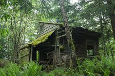 Cabin Porn #cabin #forest