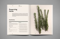 Aesthete Curator : Nourished 02 #layout