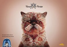 cat, persian, vacuum, Kaspen/Jung v.Matt #cat
