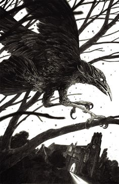 Nicolas Delort - Illustration - Main Gallery #crow #nicolas #delort