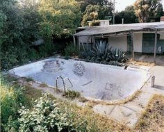 Photographs That Are Awesome / Empty Pool #trees #pool #yard #house
