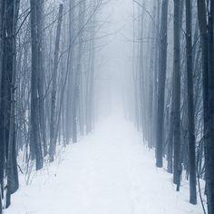 Quatres Saisons Québécoises | Beware Mag | Beware Mag #photography #winter