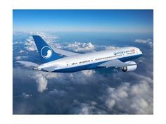 Korean air on the Behance Network #air #airline #korean #identity #guideline #logo