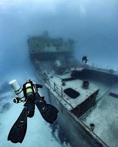 Spectacular Underwater Photography by Alex Dawson