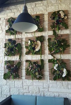 #plants #livingwall