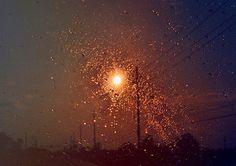 Tamara Lichtenstein #photography #landscape