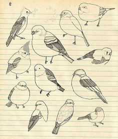 Birds picture on VisualizeUs #cute #birds #drawing #sketchbook