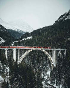 """""""I notice it's train time 🚂"""" credit: @max_widder ____________________________________________ ▶Wanna be featured? Tag @theoutdoorpassion or use our hashtag #theoutdoorpassion. ⠀ © All rights reserved to the respective owner. by @theoutdoorpassion"""