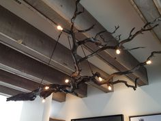 Branch Chandelier, Modern West fine Art, Salt Lake City, Utah #mark #design #hofeling