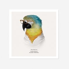 Borja Bonaque – Animal Agency « Whitezine | Design Graphic & Photography Inspirations #illustration #animals