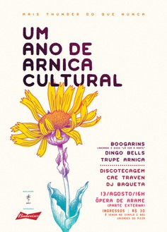 A year of Arnica Cultural