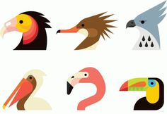 Audubon Beaks Always With Honor #always #icons #birds #honor #with