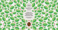 for better coffee #website #illustration