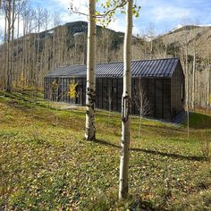 Cottage Black Provides a Retreat Within a Dense Aspen Grove