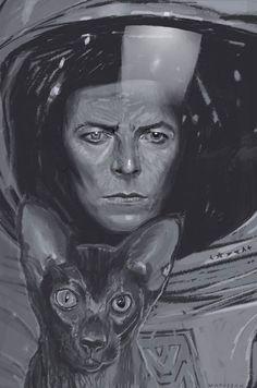 Bowie - Illustration - Dagmara Matuszak