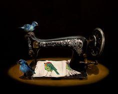 Birds in animal surreal art