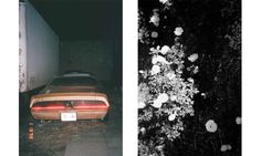 Benedict Brink #analogue #photography #flash #night